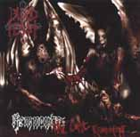 BLOOD FEAST - Remnants: The last remains      CD